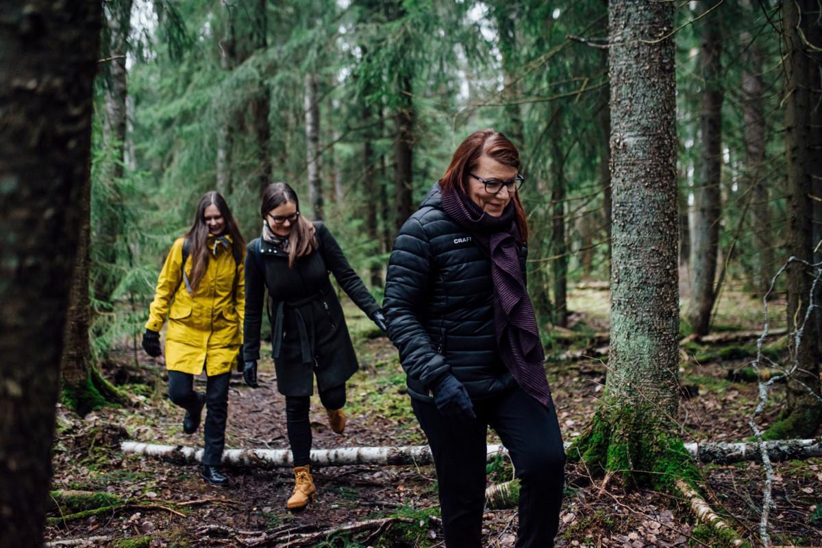 Elina Hienonen, Anna Äystö ja Minna Aho kävelyllä suojellussa korpimetsässä.